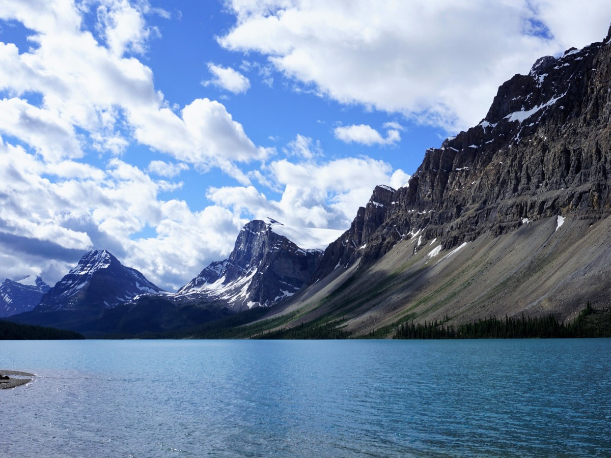Bow Lake from the shores on the Bow Lake walk