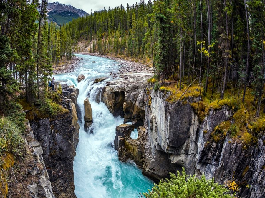 Visiting Sunwapta Falls is a must-do in Jasper National Park