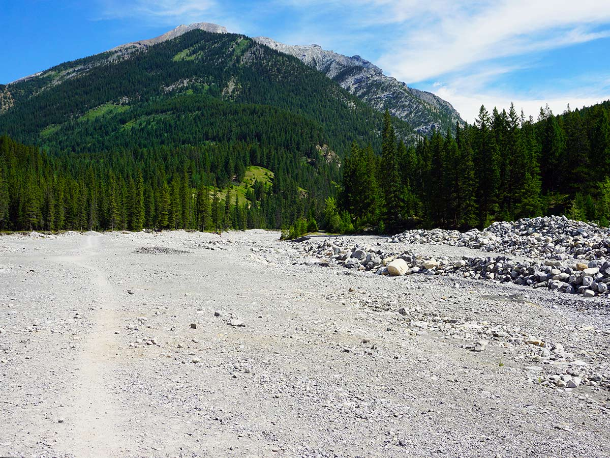 Hiking upon the Lady MacDonald Teahouse Hike from Canmore, Alberta