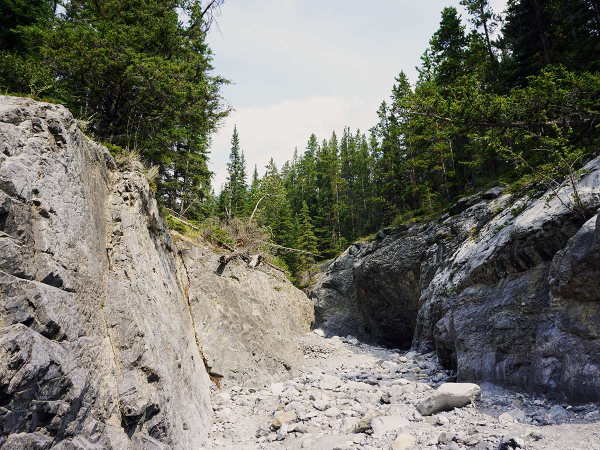 Walking in Grotto Canyon, Canmore, Alberta
