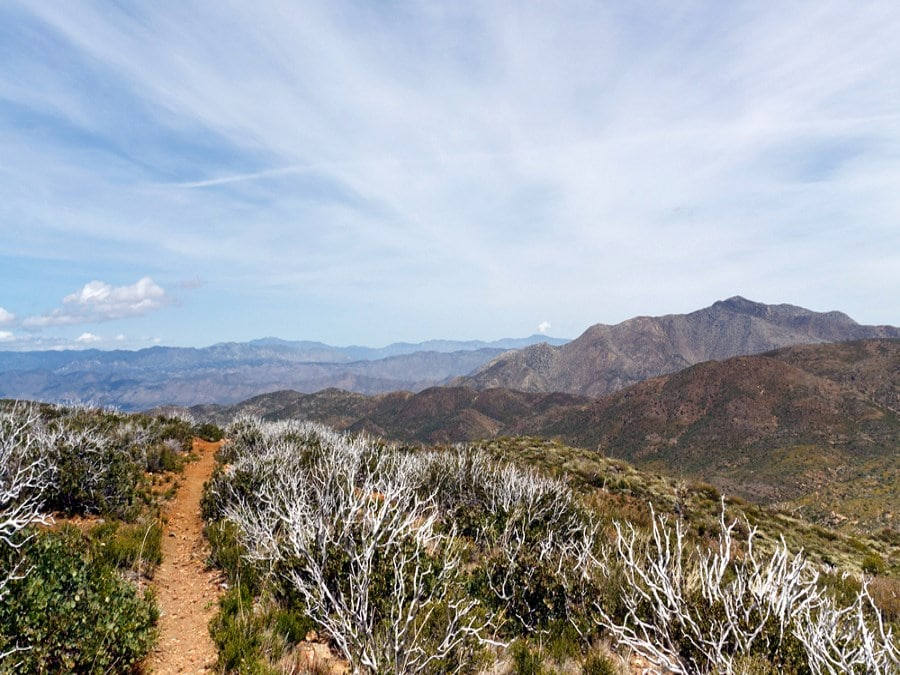 Anza Borrego Desert on Pacific Crest Trail
