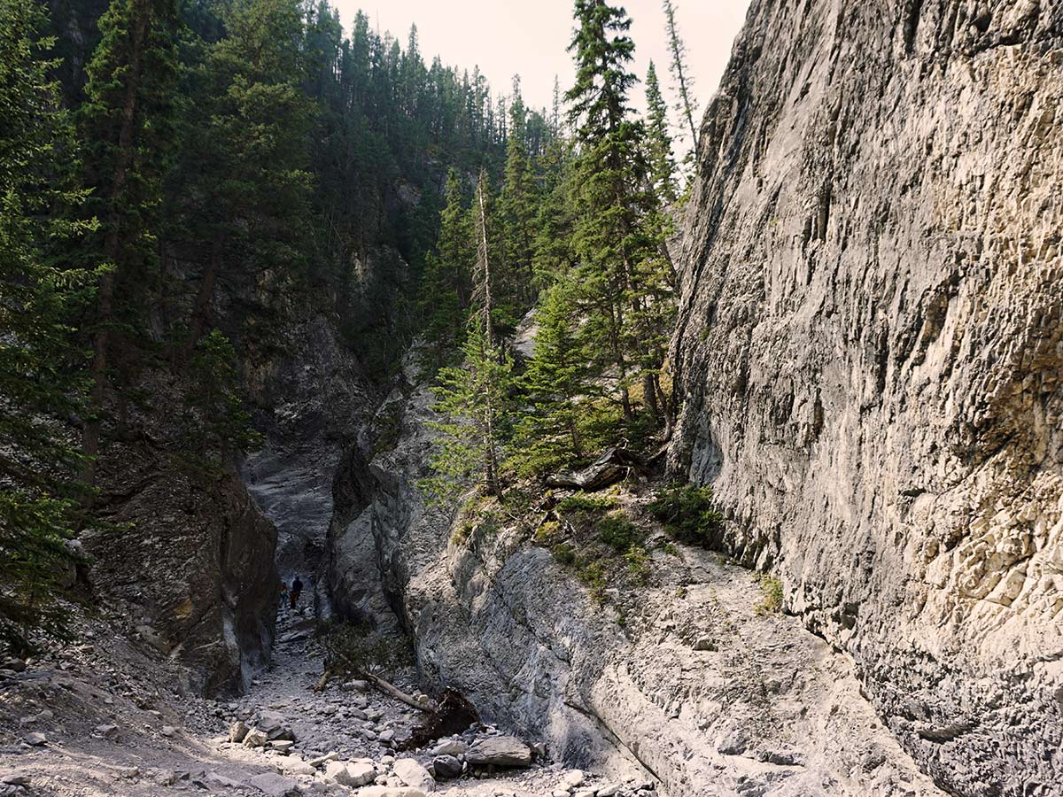 Looking down Grotto Canyon trail in Canmore, Alberta, Canada