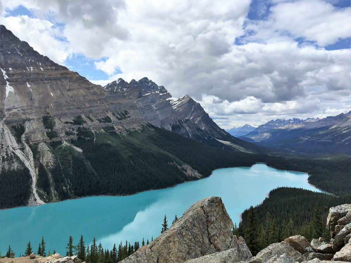 The incredible blues of the Peyto Lake Viewpoint