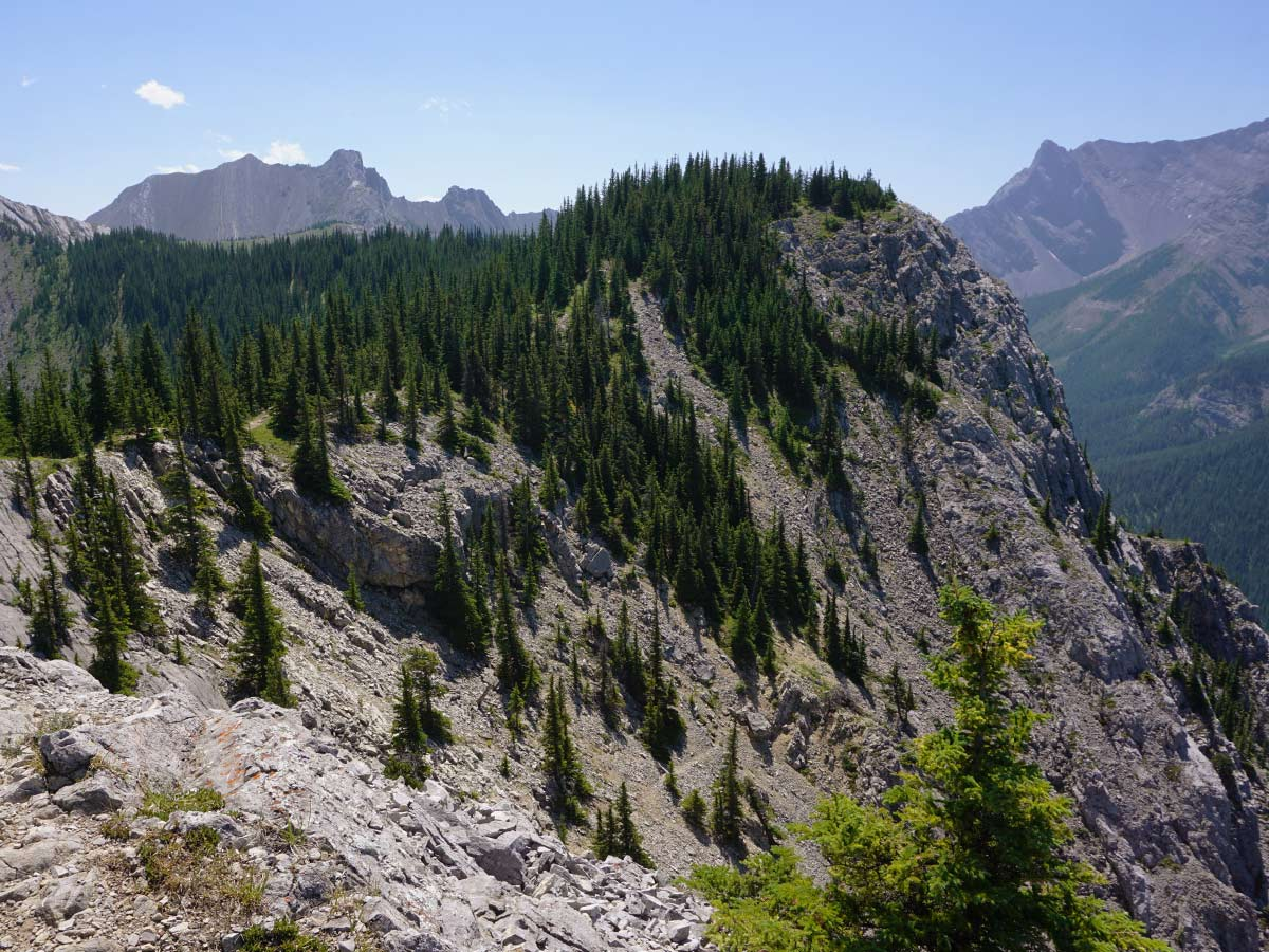 Trail of the Heart Mountain Horseshoe Hike in Canmore
