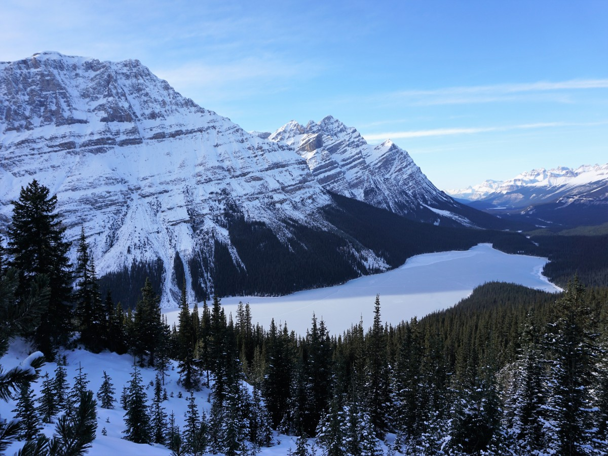Winter views of the Peyto Lake Viewpoint Hike from Icefields Parkway, near Banff National Park