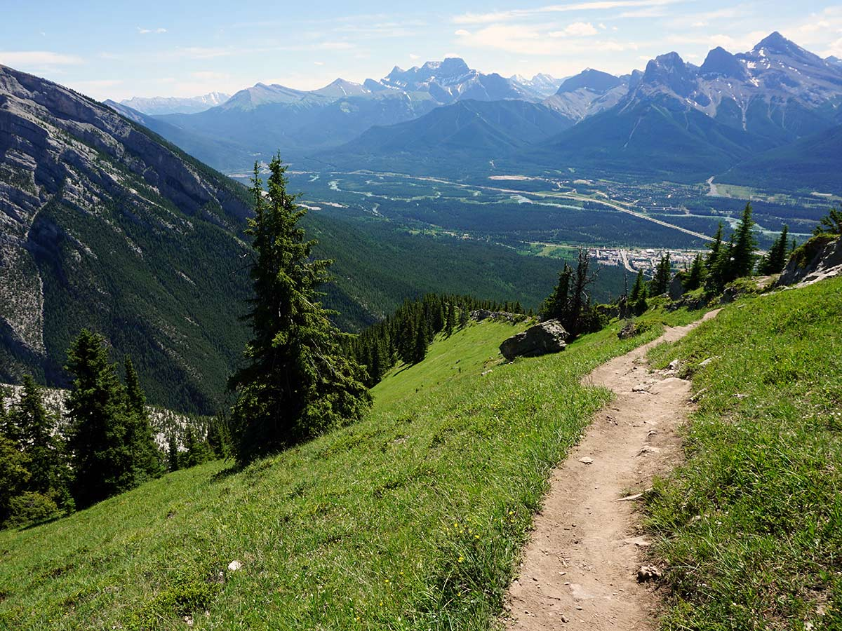 A nice path on the Lady MacDonald Tea House Hike from Canmore, Alberta