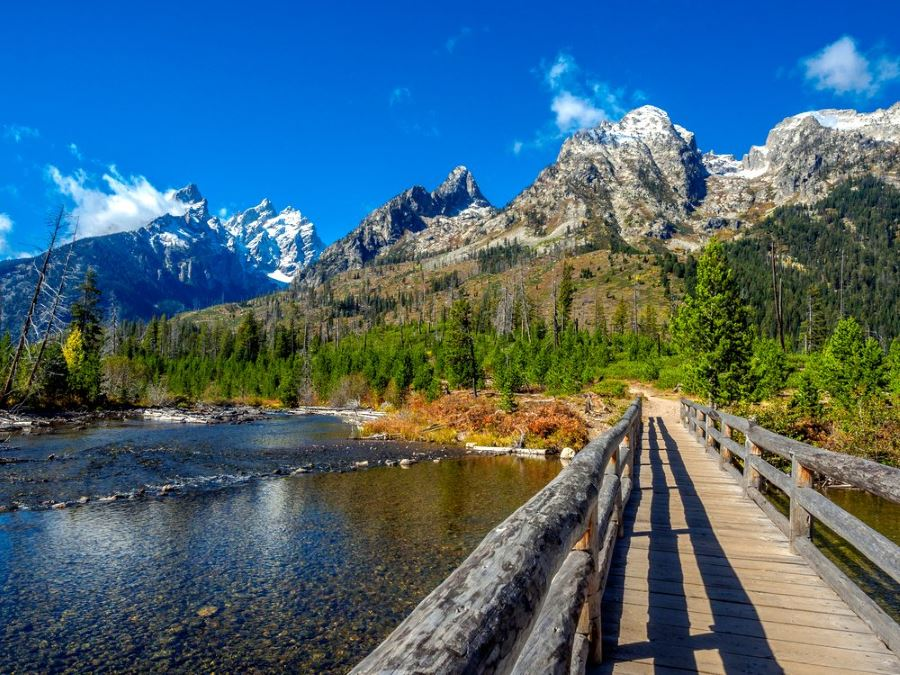Hiking Trail in Grand Teton National Park