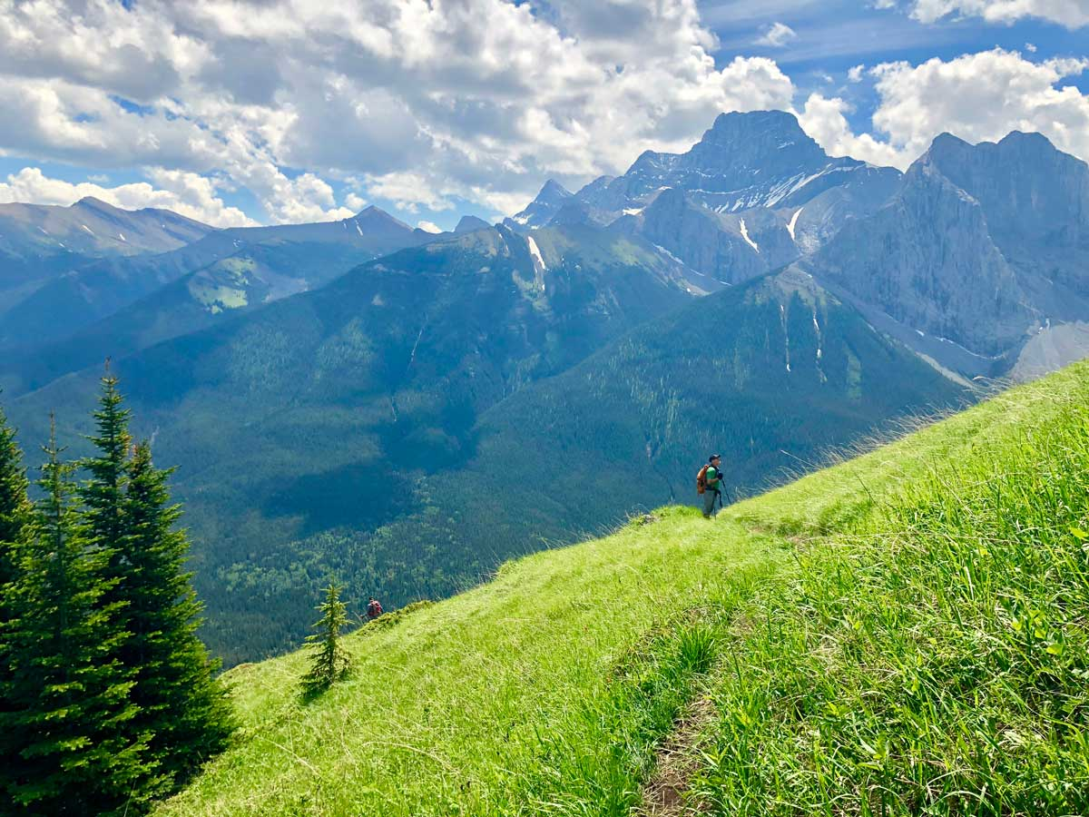Trail down on the Wind Ridge hike in Canmore, Alberta
