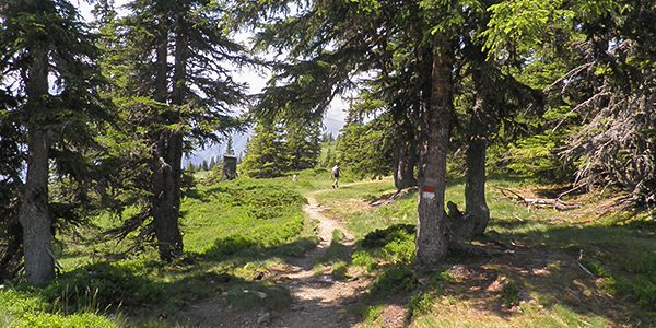 Scenery from the Schmittenhohe hike in Zell am See and Kaprun Valley, Austria