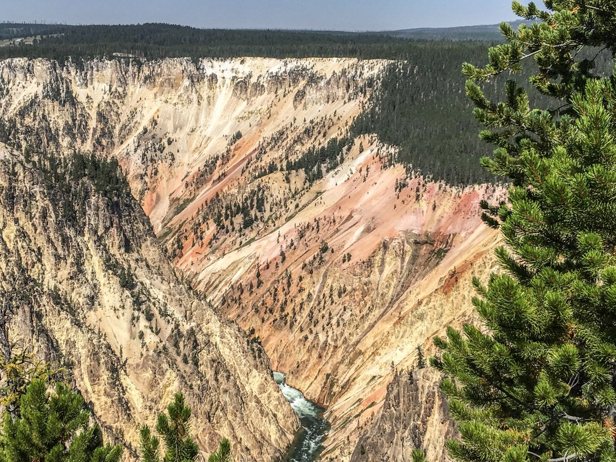 Panorama from the Artist Point to Point Sublime hike in Yellowstone