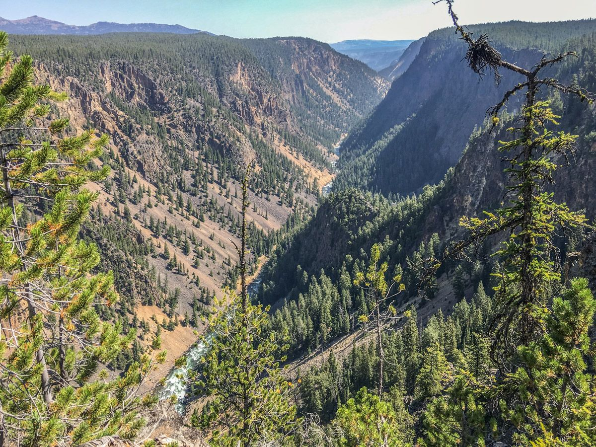 Beautiful scenery from the Artist Point to Point Sublime hike in Yellowstone