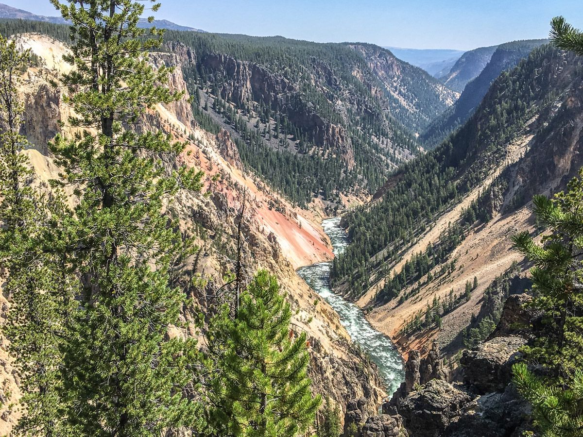 Great view from the Artist Point to Point Sublime hike in Yellowstone