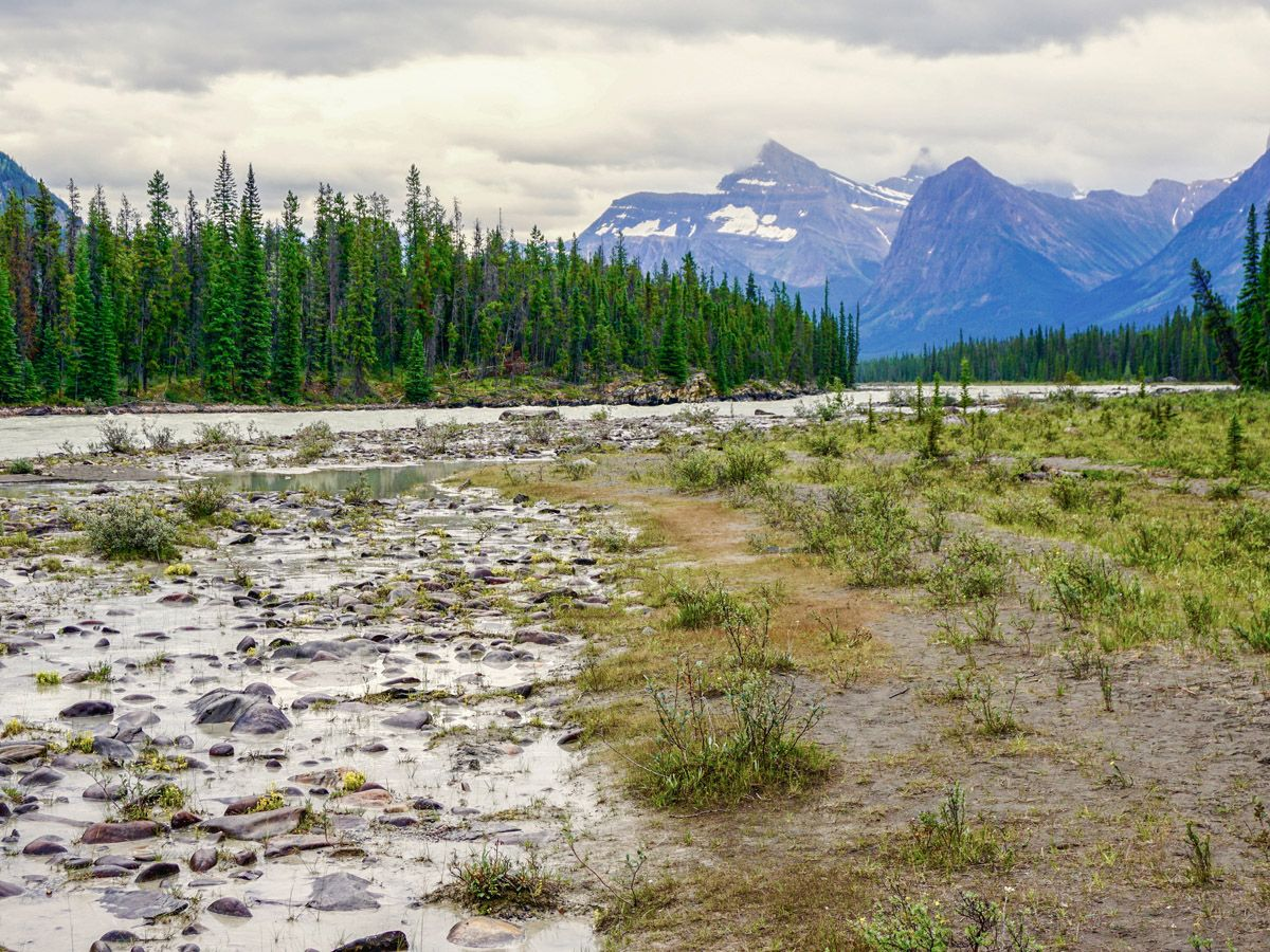 Athabasca Falls Hike in Jasper National Park has amazing scenery