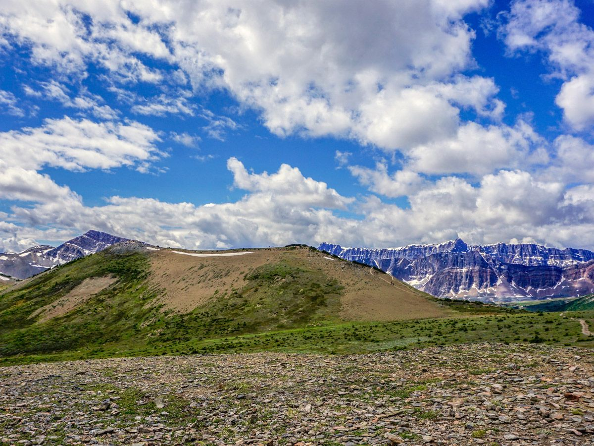 Mountains on the Bald Hills Hike in Jasper National Park, Alberta