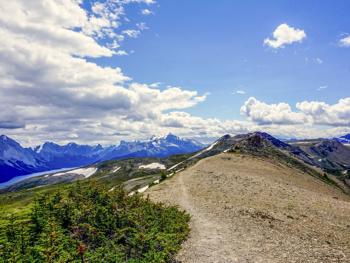 Mountain scenery on the Bald Hills Hike in Jasper National Park, Alberta