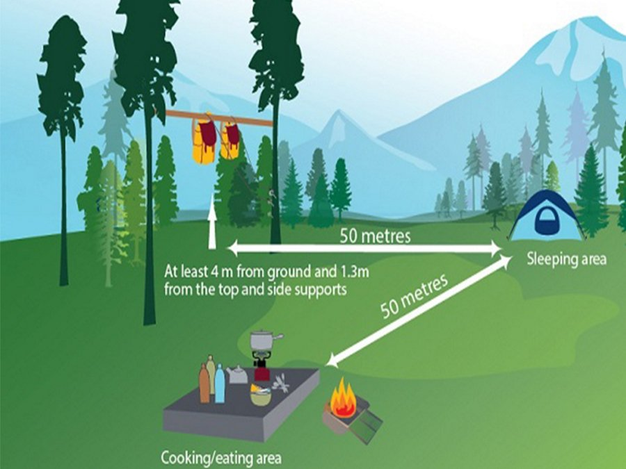 Bear safe campsite from Parks Canada