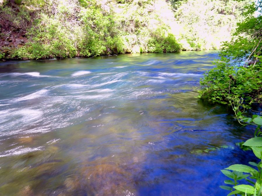 Metolius River Trail should be included when planning your trip to Bend, Oregon