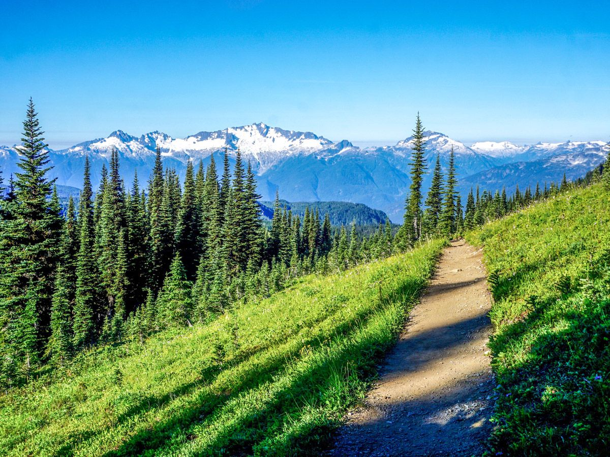 Hiking trail at Black Tusk Hike in Whistler