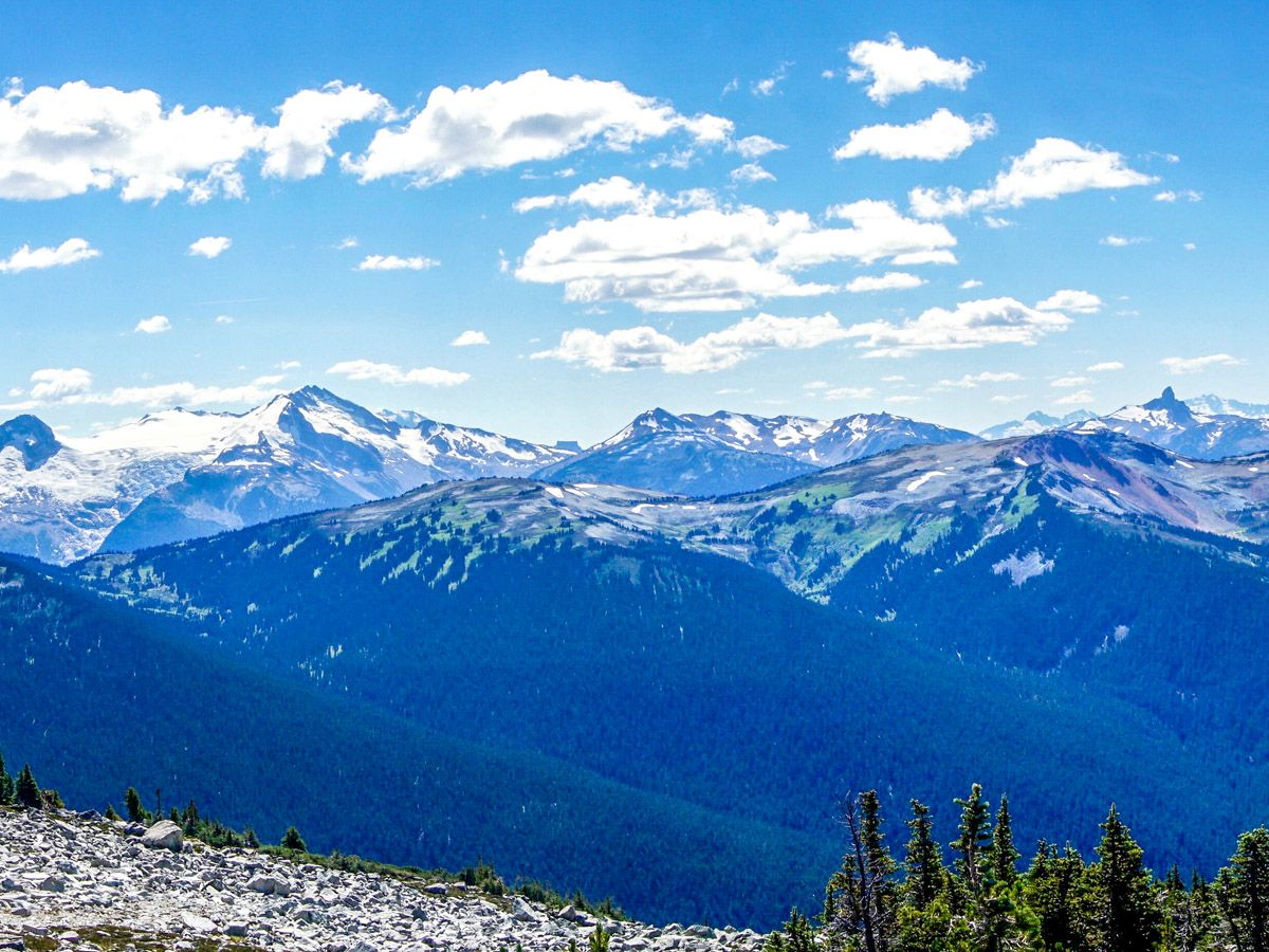 Mountain at Blackcomb Meadows Hike in Whistler