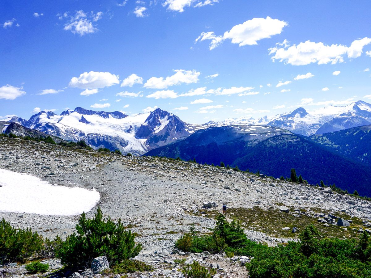 Hiking trail at Blackcomb Meadows Hike in Whistler