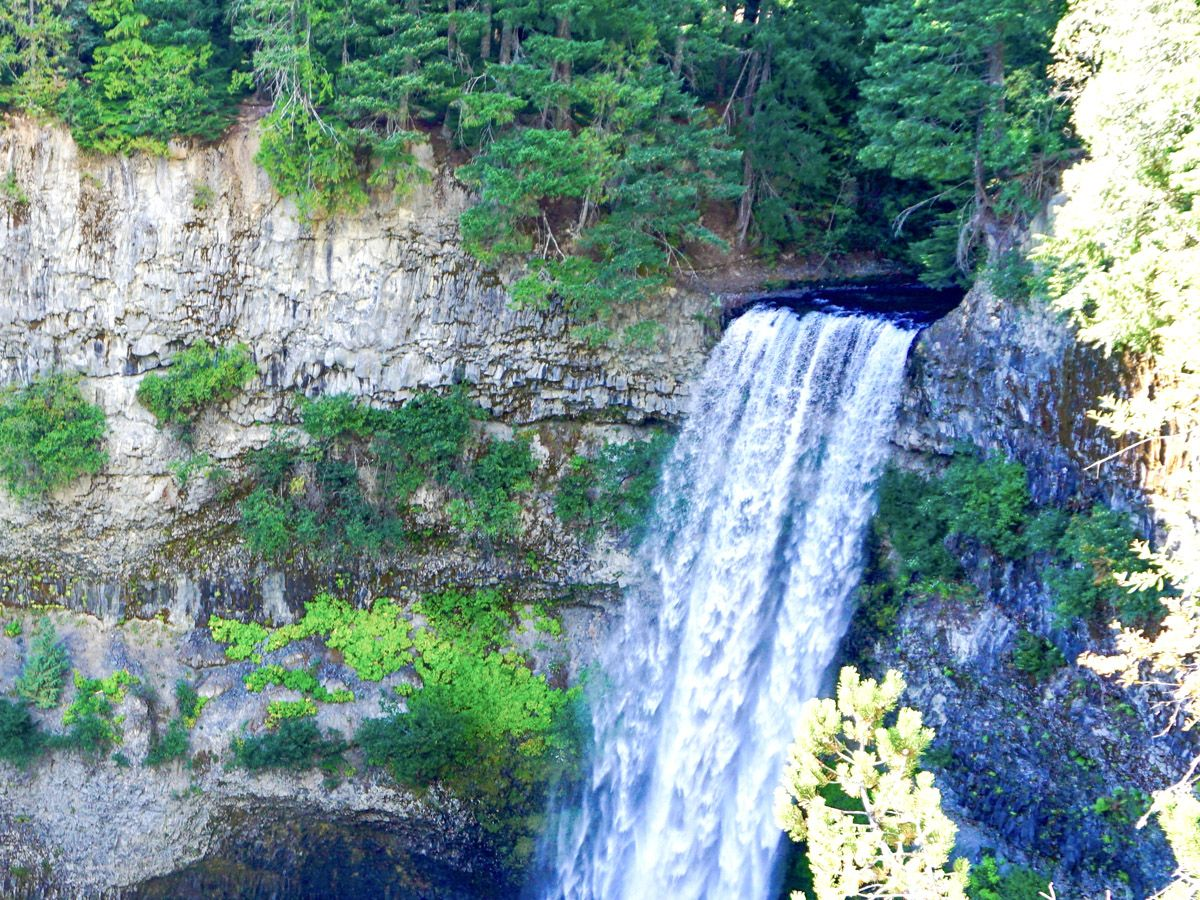 Trail views of the Brandywine Falls Hike in Whistler, Canada