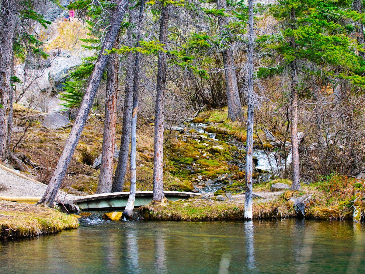 Bridge on the Grassi Lakes Circuit Hike in Canmore, the Canadian Rockies