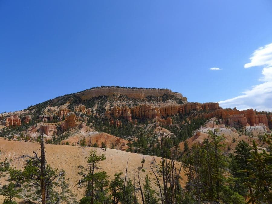 Fairyland Loop and Rim Trail