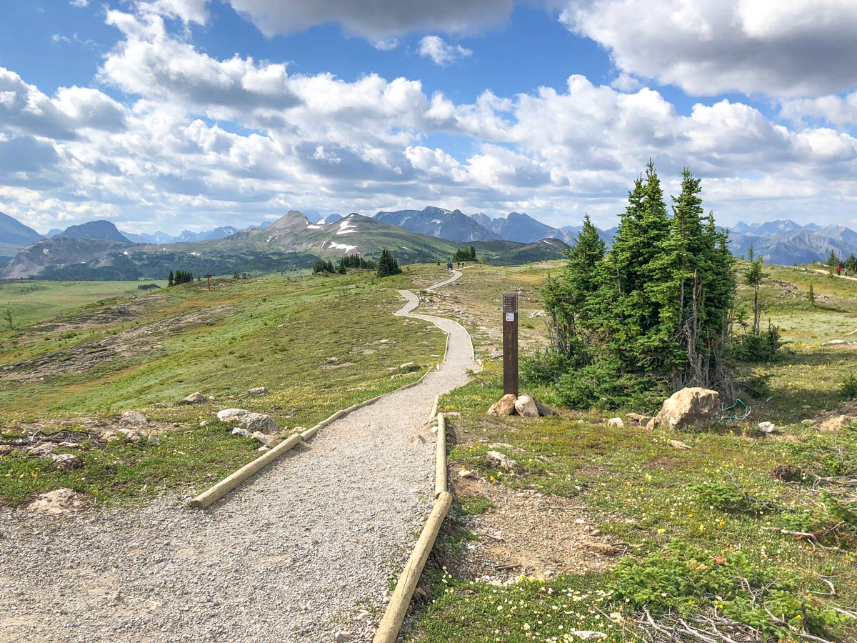 Trail of the Citadel Pass Hike in Banff National Park