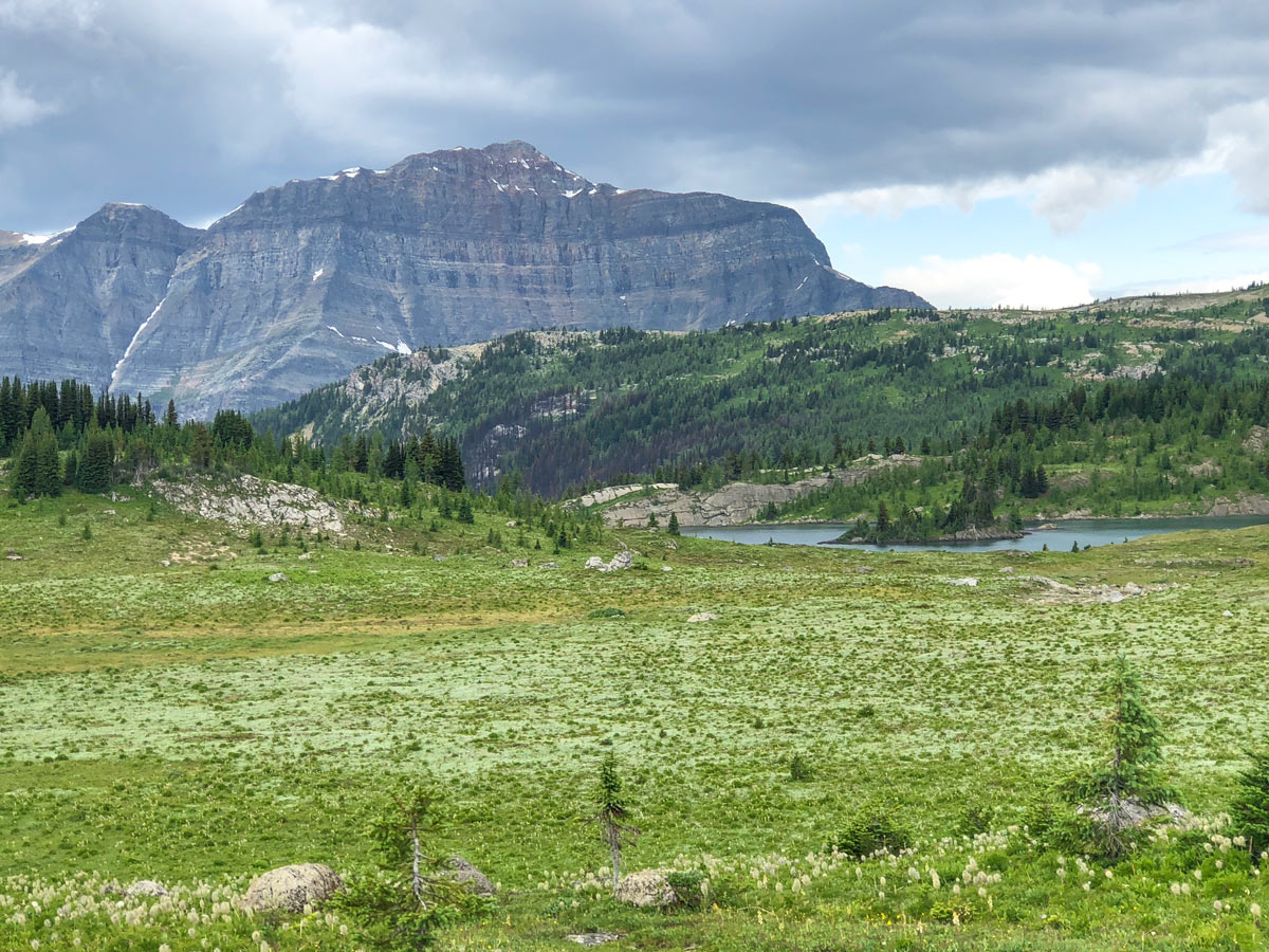 Beautiful views of the Citadel Pass Hike in Banff National Park