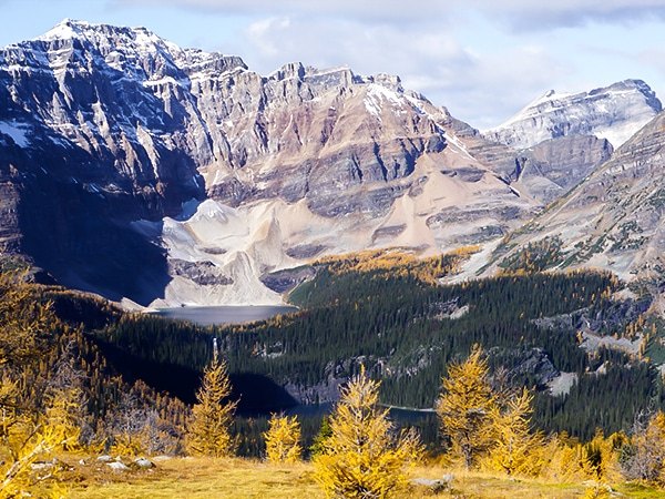 Trail of the Healy Pass hike in Banff National Park, Alberta