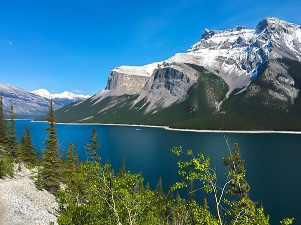 Trail of the Aylmer Lookout hike in Banff National Park, Alberta