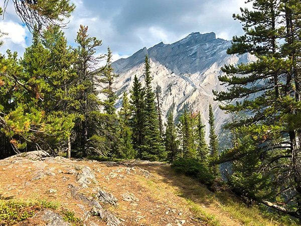 Scenery from the Stoney Squaw hike in Banff National Park, Alberta