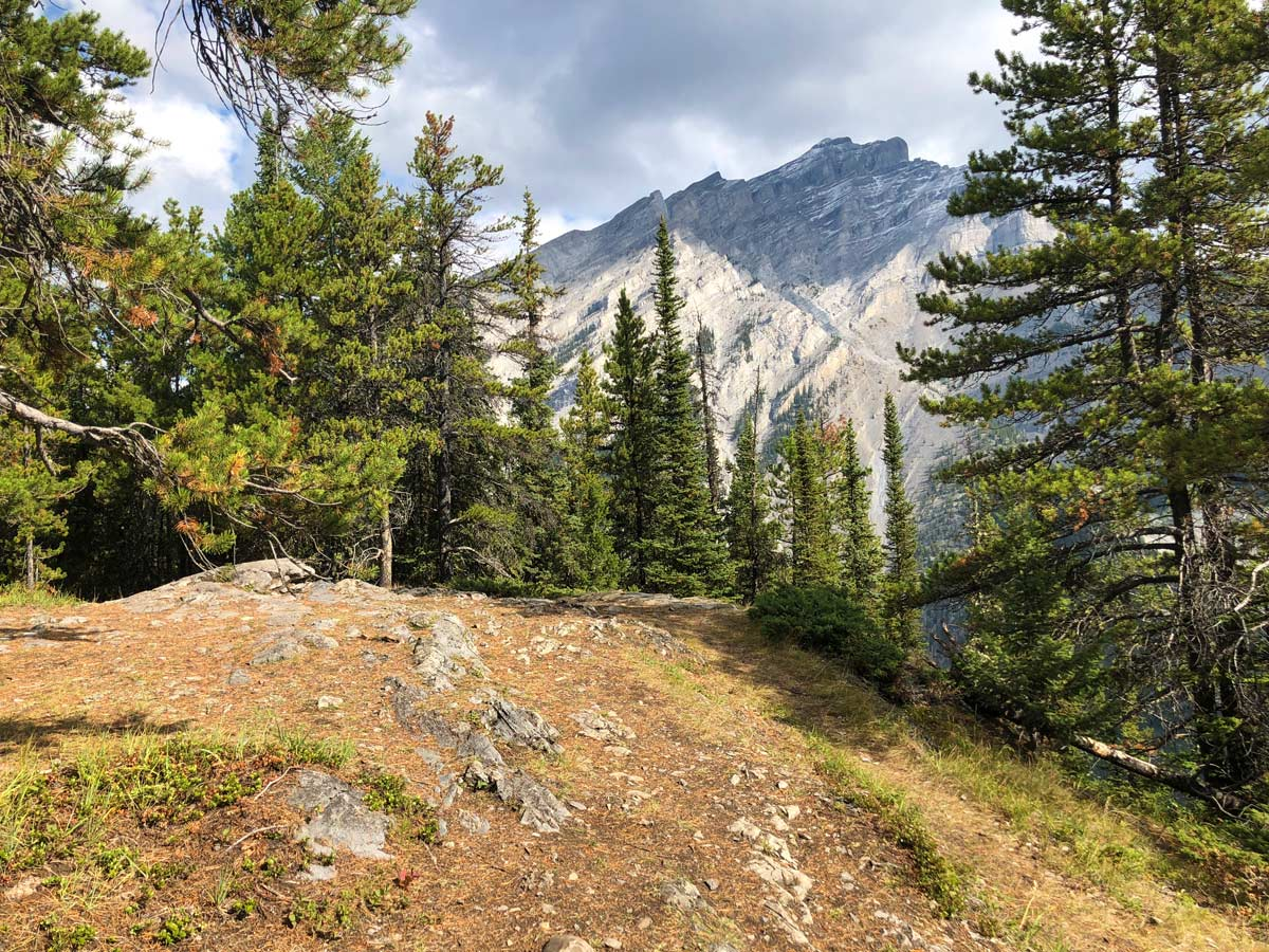 Great views from the Stoney Squaw Hike near Banff, Alberta