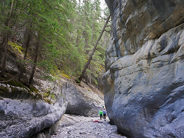 Trail of the Grotto Canyon hike in Canmore, the Canadian Rockies