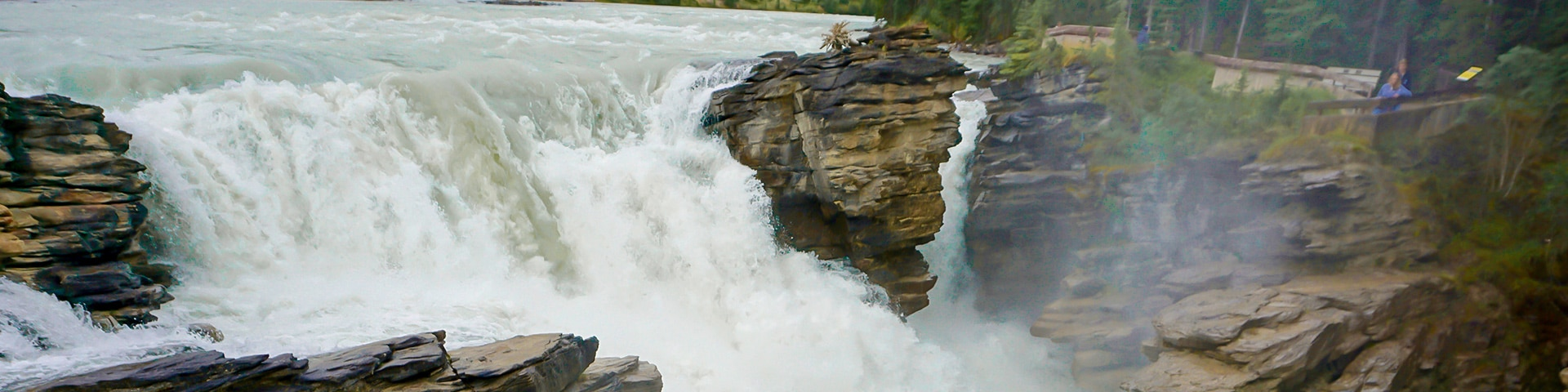 Views from the Athabasca Falls hike in Jasper National Park