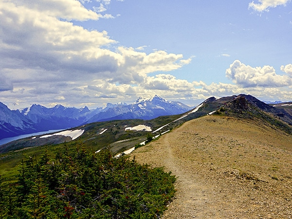Trail of the Bald Hills hike in Jasper National Park