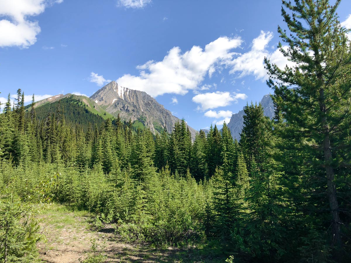 The trail into the valley on the Headwall Lakes Hike near Smith-Dorrien Trail in Kananaskis, near Canmore