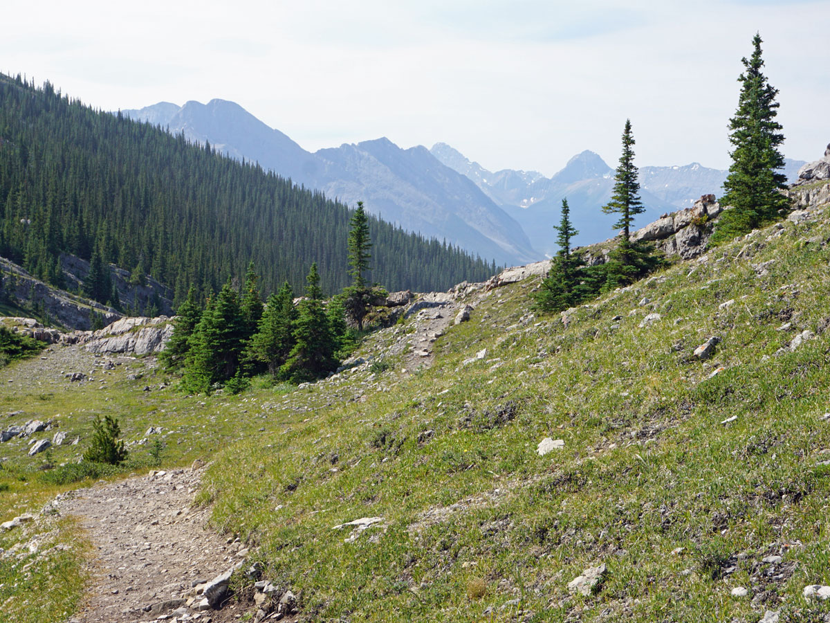 Trail of the West Wind Pass Hike near Smith-Dorrien Trail in Kananaskis, near Canmore