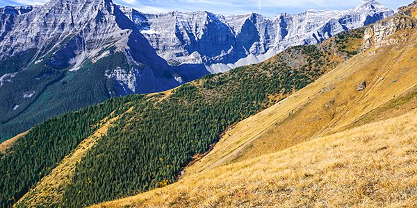 Trail of the Centennial Pass and Mount Allan Summit hike from Kananaskis near Canmore