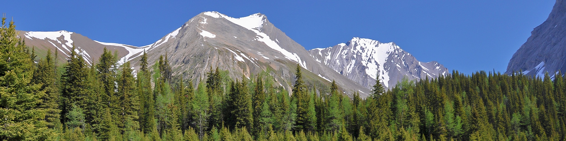 Panorama from the Chester Lake hike from Smith-Dorrien Trail in Kananaskis near Canmore