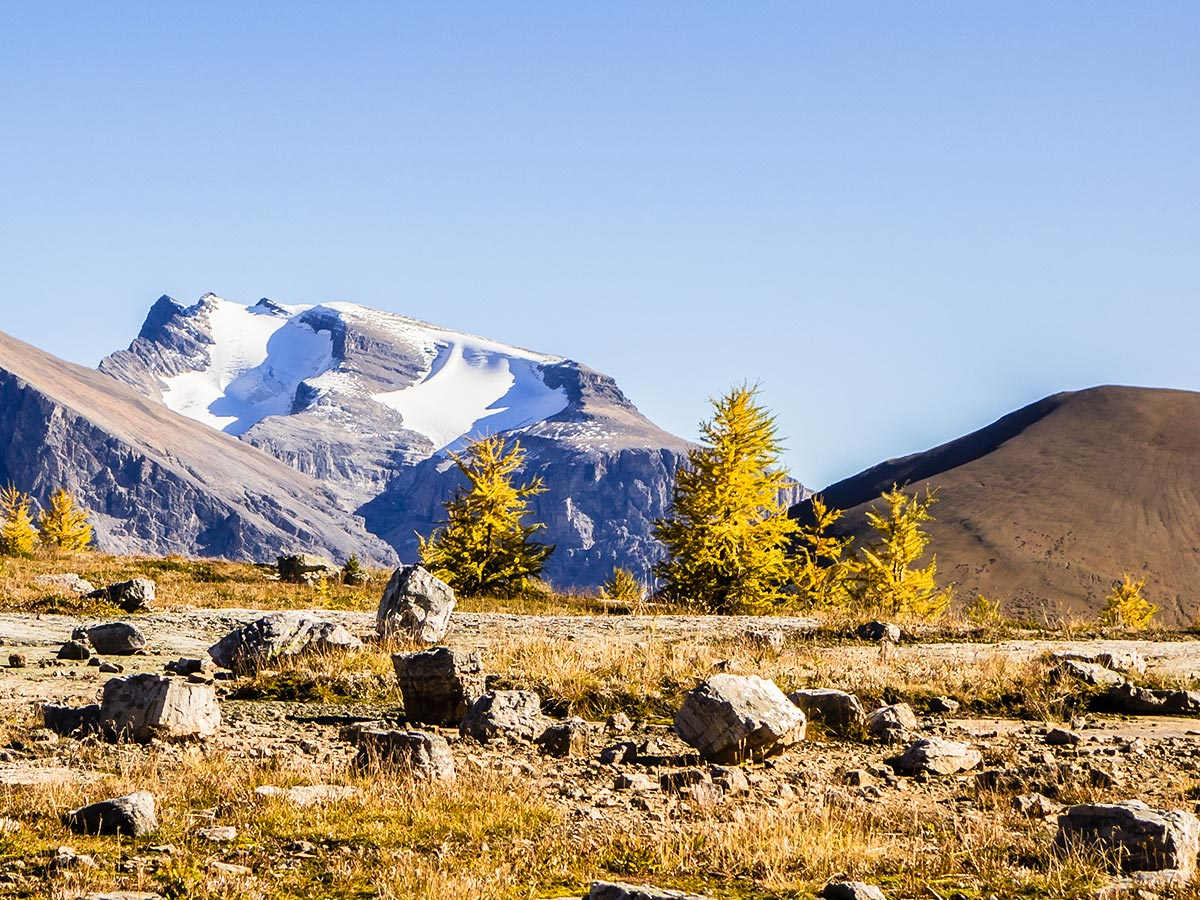 Autumn in the Skoki Region on the Redoubt Lake via Boulder Pass Hike from Lake Louise in Banff National Park