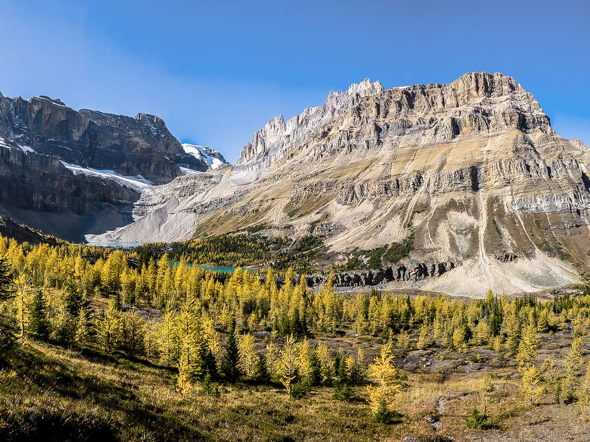Panorama from the ascent of the Deception Pass on the Skoki Lakes Hike from Lake Louise in Banff National Park