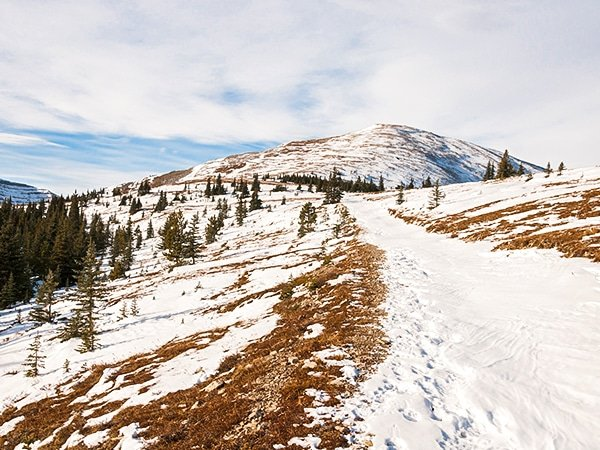 Trail of the Moose Mountain hike near Kananaskis and Canmore