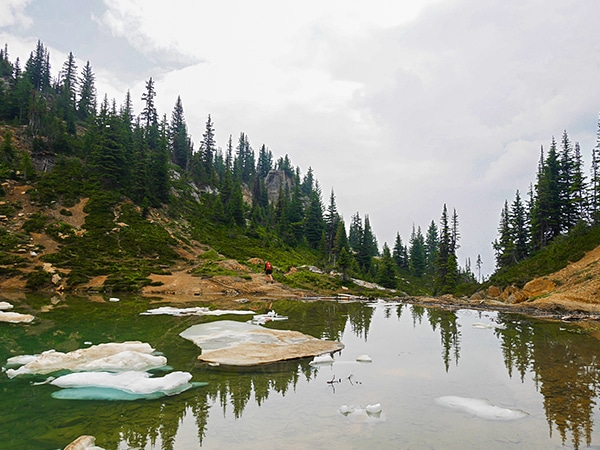 Trail of the Hamilton Lake hike in Yoho National Park
