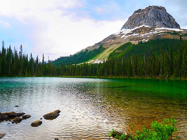 Trail of the Yoho Lake hike in Yoho National Park