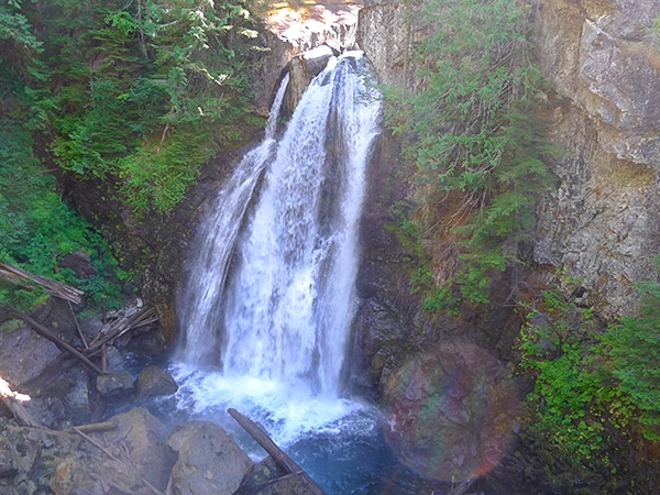 Scenery of the Lady Falls hike in Strathcona Provincial Park, Vancouver Island
