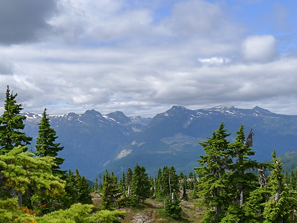 Scenery of the Mt Becher hike in Strathcona Provincial Park, Vancouver Island
