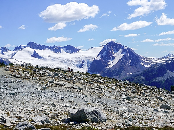 Trail of the Blackcomb Meadows hike in Whistler, British Columbia