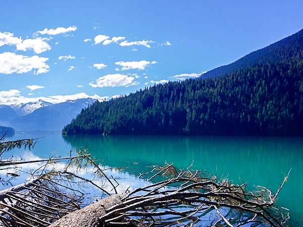 Scenery of the Cheakamus Lake hike in Whistler, British Columbia