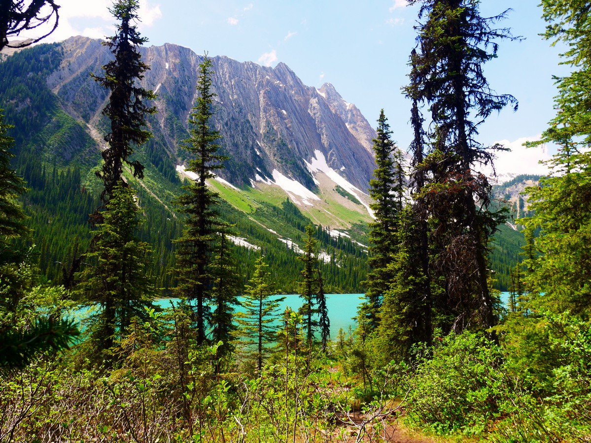 Sherbrooke Lake and Mt Ogden through trees on the Paget Lookout & Sherbrooke Lake Hike in Yoho National Park, Canada